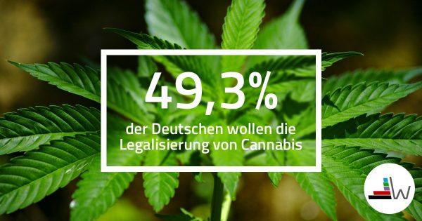 1611-cannabis-auswertung-min